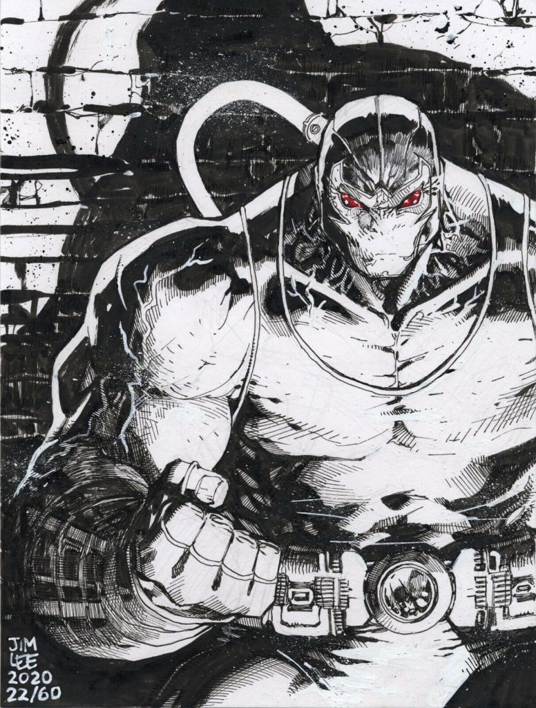 Jim-Lee-Bane-original-art